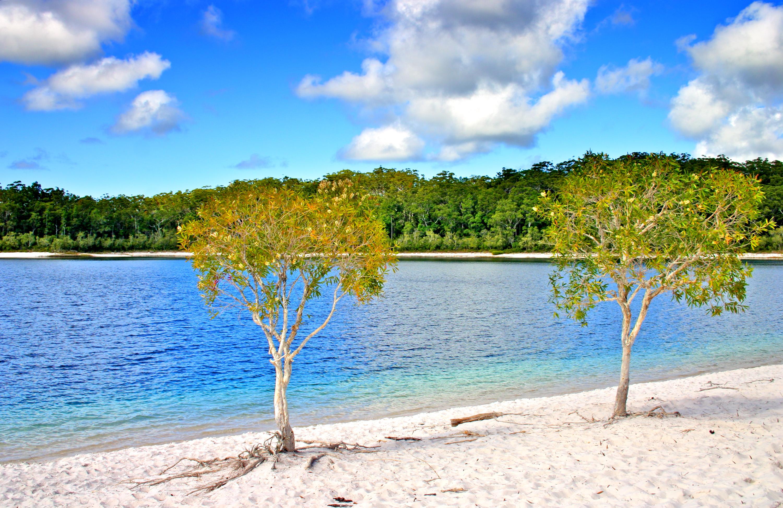 De mooiste stranden van australi - Witte salontafel thuisbasis van de wereldberoemde ...